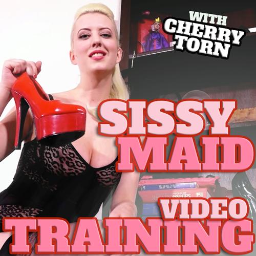 Training Sissy Male Maids 116